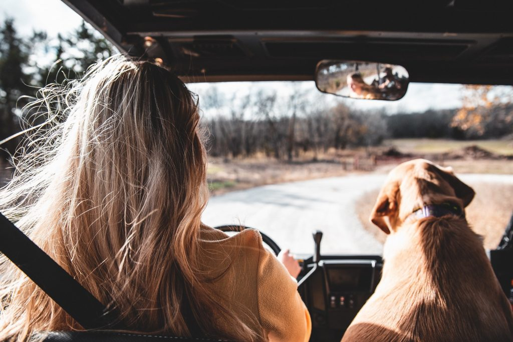 Road Trip Essentials to Keep in Your Car