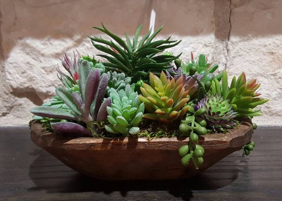 Beautiful cactus-filled dough bowl